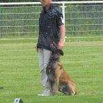 education du chien strasbourg_concours obeissance