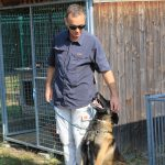 educateur canin strasbourg - malinois